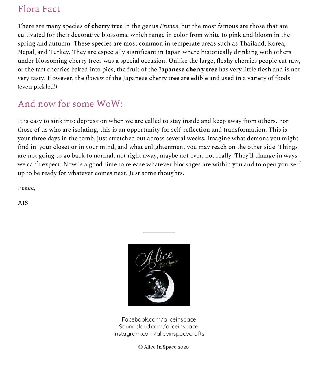 AIS Newsletter (5)-page-003